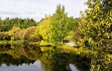 Мосводосток приступил к весенней очистке берегов в Покровском-Стрешневе